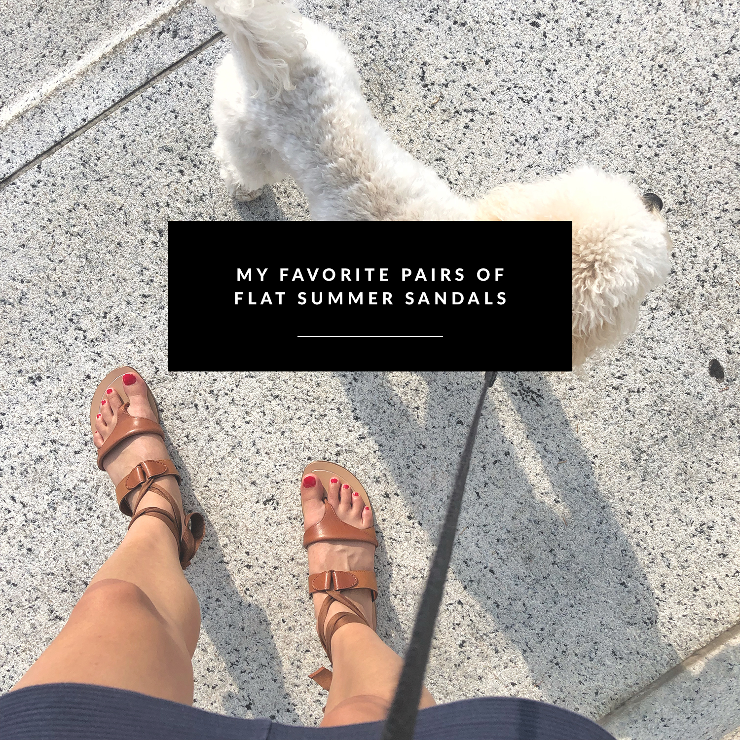 Favorite pair of flat summer sandals