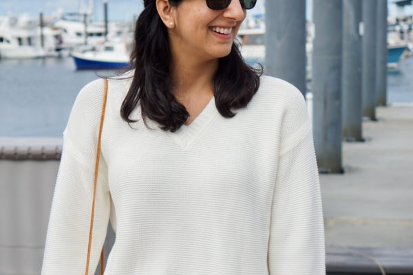 Everlane Cotton V-Neck Sweater