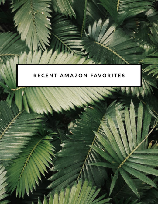 Recent Amazon Favorites